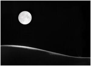 Claire-de-Lune-6